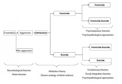 "Figure 1: A diagram illustrating the various approaches to the homicide-suicide. Adapted from ""Homicide followed by suicide: an empirical analysis"" by MCA Liem, 2010, Dissertation Utrecht University, the Netherlands. Adapted with permission."